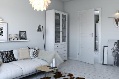 Innenraumtüren   Acrylfarbe Premium **** Weiß