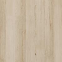 Kolorystyka Buk Piaskowy