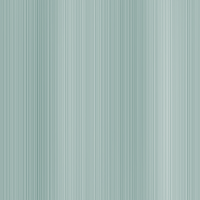 Kolorystyka Srebrny szczotkowany