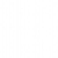 Kolorystyka Dąb Biały RAL 9016